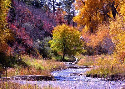 la-plata-river-at-ridgewood