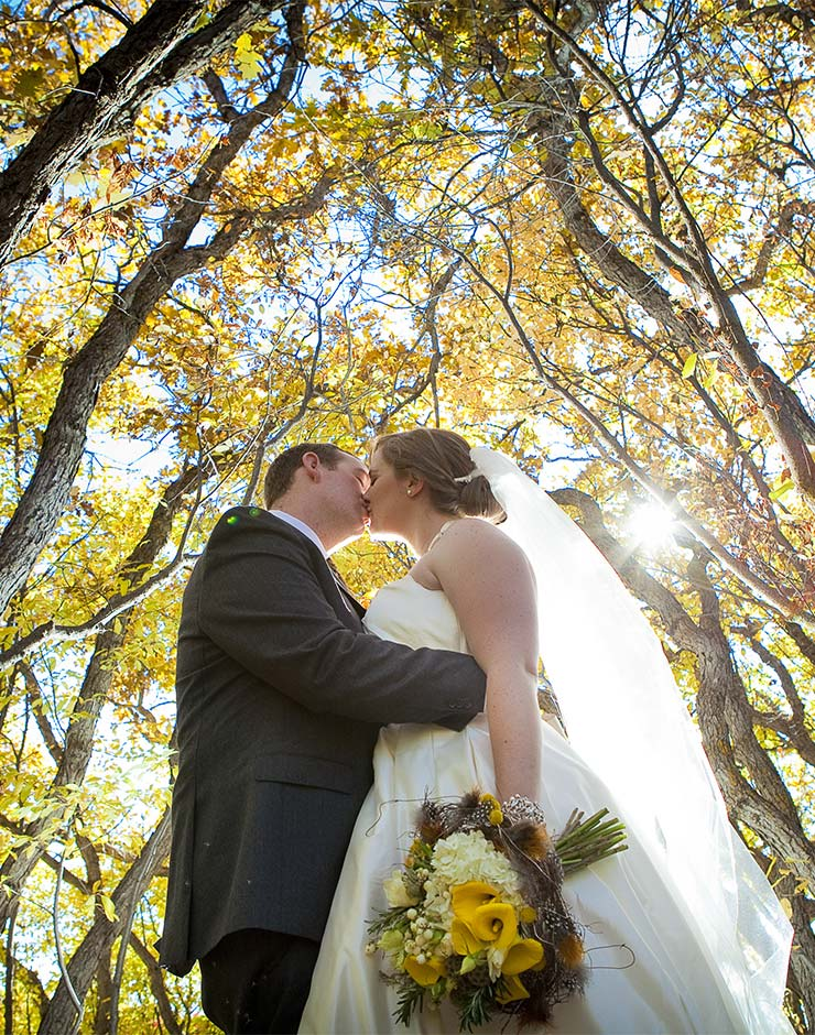 Wedding couple standing under trees with yellow leaves