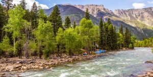 River in Colorado with tall trees on its bank and mountains in the distance