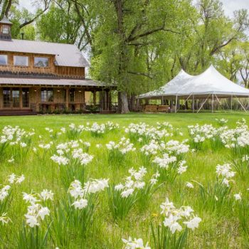 a wedding event venue with wildflowers and large tent